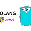 Como instalar Go 1.7 no CentOS 7 - Hospedagem de Sites - SECNET