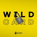 Como emitir Certificado SSL WildCard na SECNET