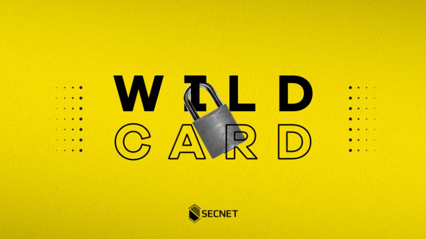 Como emitir Certificado SSL/TLS WildCard na SECNET
